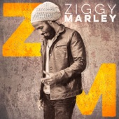 Ziggy Marley - Start It Up