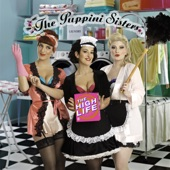 The Puppini Sisters - Girls Just Wanna Have Fun