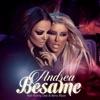 Bésame feat Ronny Dae Benny Blaze Single