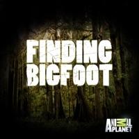 Télécharger Finding Bigfoot, Season 10 Episode 6