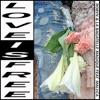 Love Is Free (feat. Maluca) - Single, Robyn & La Bagatelle Magique