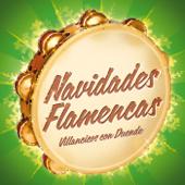 Navidades Flamencas - Villancicos con Duende