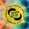 Born on the Bayou: The Bluegrass Tribute to Creedence Clearwater Revival