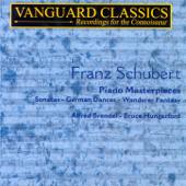 Sonata in C Minor, D. 958: II. Adagio
