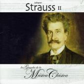 [Download] An der schönen blauen Donau, Op. 314 MP3