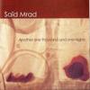 Said Mrad - Yaba Lah (Remix) artwork