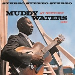 Muddy Waters - Baby, Please Don't Go