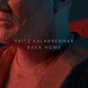Fritz Kalkbrenner - Back Home (Radio Edit) artwork