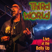 Reggae Ambassador (Live) - Third World
