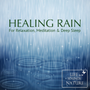 Light Rain With Rumbling Thunder and Claps - Life Sounds Nature - Life Sounds Nature