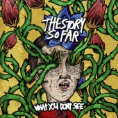The Story So Far - Things I Can't Change