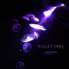 Hedonism - EP - Violet Tree
