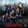 Chicago PD, Season 3 wiki, synopsis