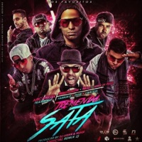 Tremenda Sata, Pt. 2 (Remix) [feat. Arcángel, Ñengo Flow, Ñejo, Lui-G 21+, Farruko, Zion & J Balvin] - Single Mp3 Download
