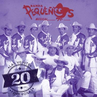 Las 20 Poderosas (USA) - Banda Pequeños Musical