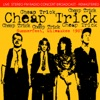 Summerfest, Milwaukee 1987 (Live FM Radio Recording Remastered In Superb Fidelity), Cheap Trick