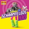Various Artists - Topradio - Het Beste Uit De Schaamteloze 100 artwork