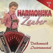 Harmonika Zauber, Vol.1 - Volksmusik Instrumental - Various Artists - Various Artists
