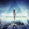 Never Felt Better (feat. Blackphone) - EP, Andy Caldwell & Bass Kleph
