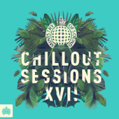 Ministry of Sound Chillout Sessions XVII