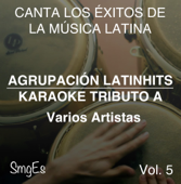 Instrumental Karaoke Series: Varios Artistas, Vol. 5 (Karaoke Version)
