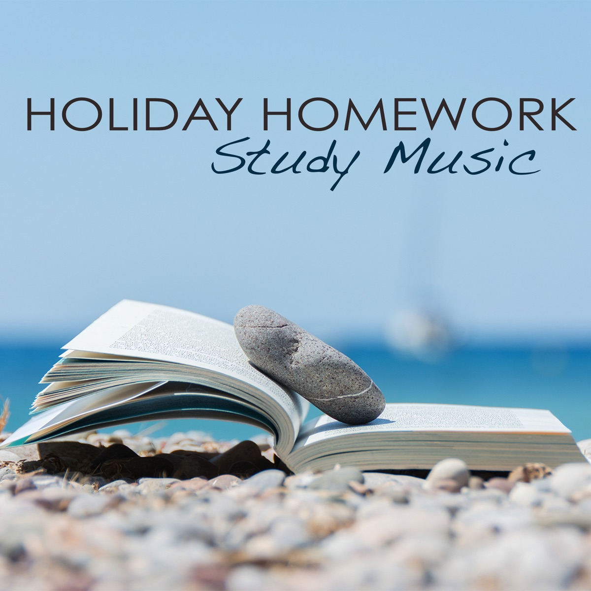 Holiday Homework Study Music – Classical and Ambient Instrumental