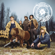 Black Dog - Steve 'n' Seagulls