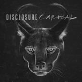 Disclosure - Superego