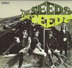 The Seeds - Try To Understand