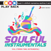 Playback: Soulful Instrumentals  Soul Stirring Tamil Instrumentals-Various Artists