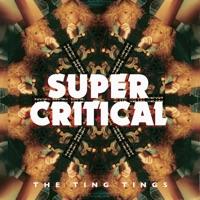 Super Critical Mp3 Download