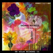 Thomas Mudrick - Particles of Gold