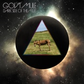 Gov't Mule - Shine On You Crazy Diamond, Pts. 6 - 9