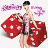 Waking Up In Vegas - Single