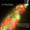 In the Dark - Platinum Consort & Scott Inglis-Kidger