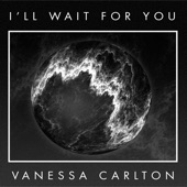 I'll Wait for You - Single