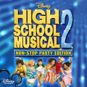 High School Musical 2 - The Megamix (Full Version)