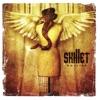 Collide (Deluxe), Skillet