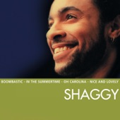 The Essential Shaggy
