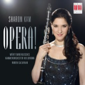 Sharon Kam - Paolo et Virginia, Op. 78 (Arr. for Clarinet, Violin and Orchestra by Andreas Tarkmann)