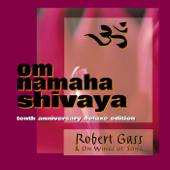 Om Namaha Shivaya