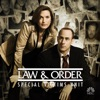Law & Order: SVU (Special Victims Unit), Season 12 wiki, synopsis