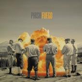 Phish - Sing Monica