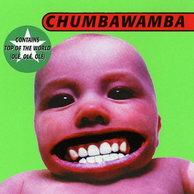 Cover art for Tubthumping