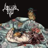 Immortal Bird - Akrasia  EP Album