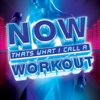 NOW That's What I Call a Workout - Various Artists