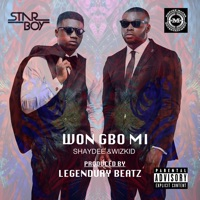 Shaydee & Wizkid - Won Gbo Mi - Single