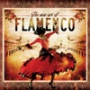 The New Art of Flamenco
