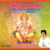 Ganesh Ashtakam Yatho Ananta artwork