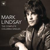 Mark Lindsay - Arizona